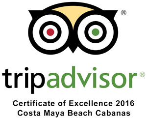 TripAdivsor Certificate of Excellence